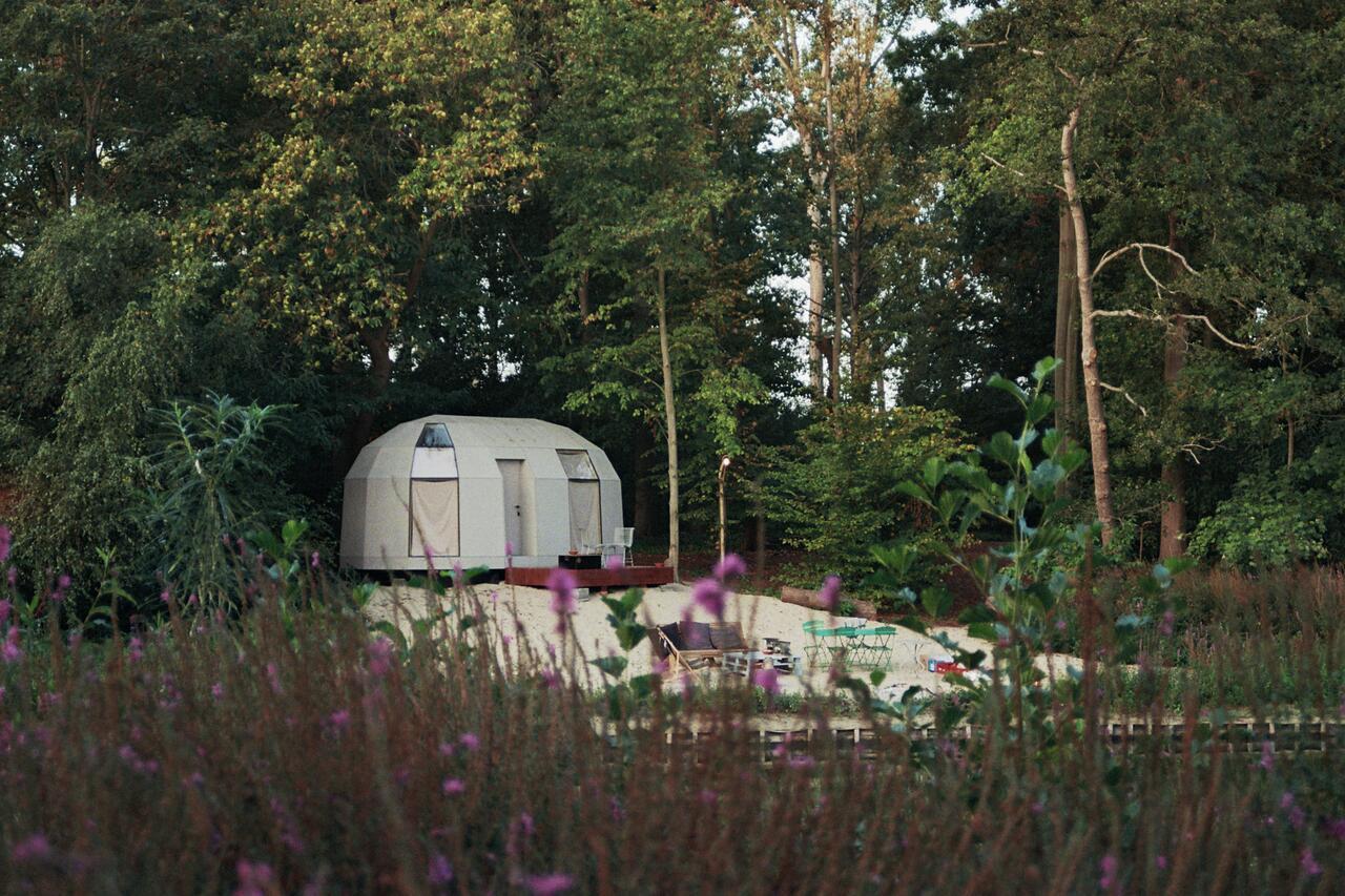 Auping en Tortiga laten de Belg duurzaam dromen dichtbij